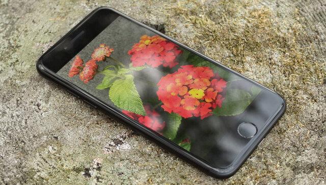 Điện thoại iPhone 7 32GB