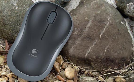 Chuột Logitech Wireless B175
